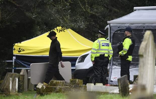 """Марков раскрыл, чем грозит обнародование данных по """"делу Скрипалей"""" британскому полицейскому"""