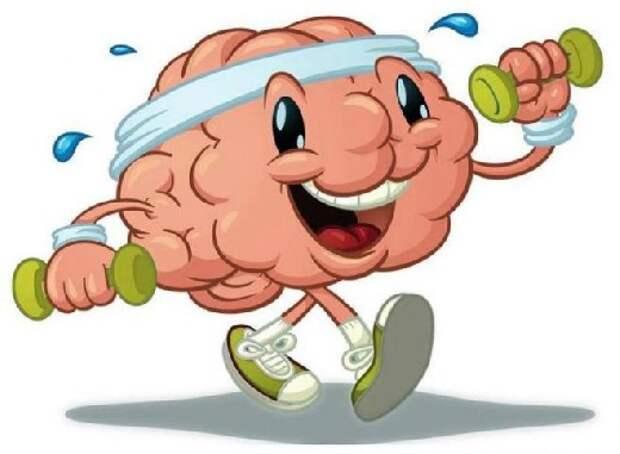 Три упражнения для мозга, которые нейрохирурги советуют выполнять всем
