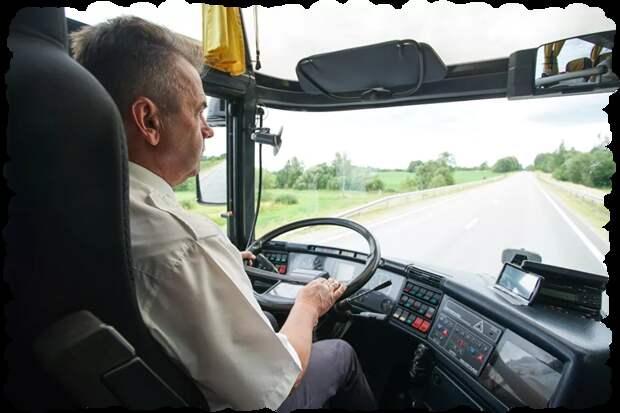 Профессия водитель автобуса. Что привлекает соискателей в эту профессию