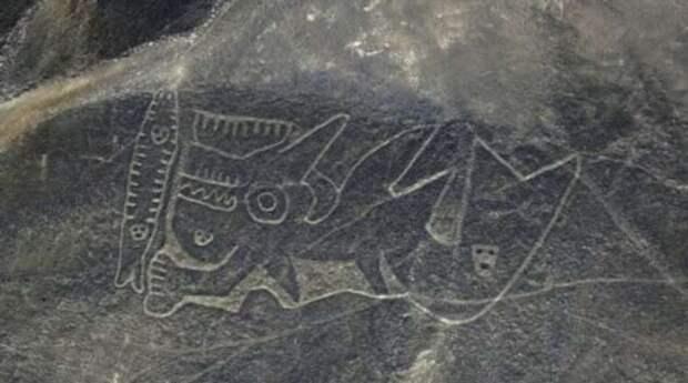 На поверхности Земли обнаружен самый большой рисунок кошки (5 фото)