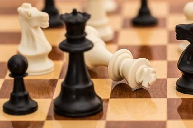 Российским шахматистам вручили государственные награды