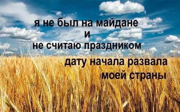 Украина-2021: «леди Ю» и земельный шатун для «мальчика Зе»