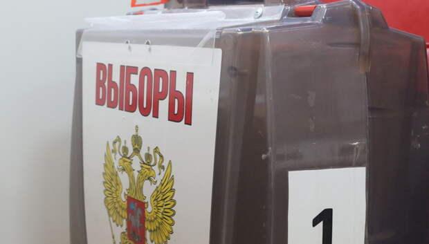 83,05% проголосовавших в Подмосковье одобрили поправки после обработки 0,22% протоколов