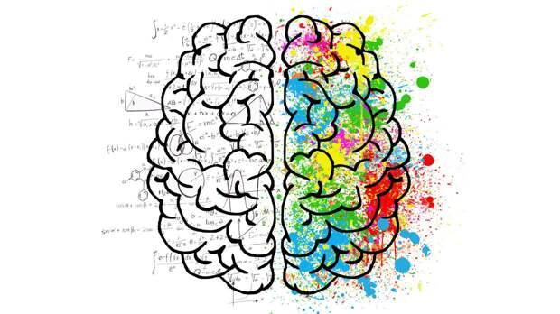Шведский профессор рассказал, как бороться со старением мозга