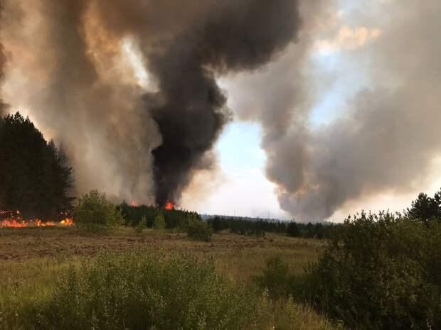 Распространение лесного пожара в Каракулинском районе удалось остановить
