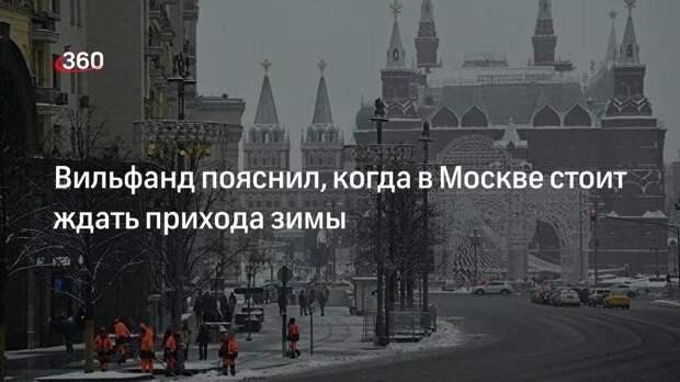Научный руководитель Гидрометцентра Роман Вильфанд: зима не придет в Москву в ближайшие дни