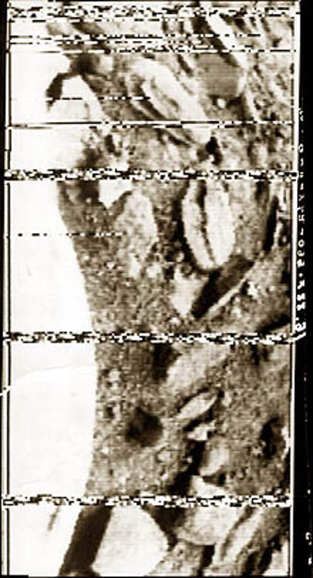 В том,  что были сделаны снимки поверхности Венеры, есть заслуга и белорусских  ученых