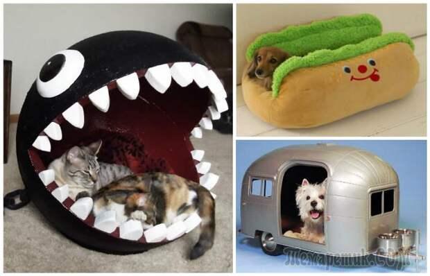 15 невероятных домиков для кошек и собак, которые заставят улыбнуться