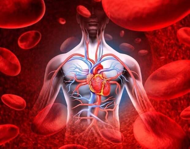 Что вызывает нарушение кровообращения