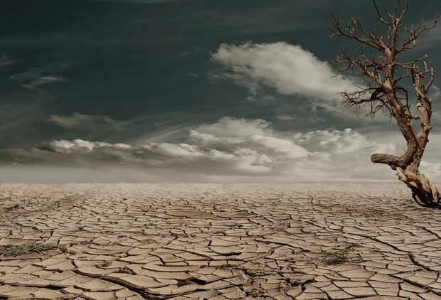 Запасов воды для Симферополя хватит до зимы, — Гоцанюк