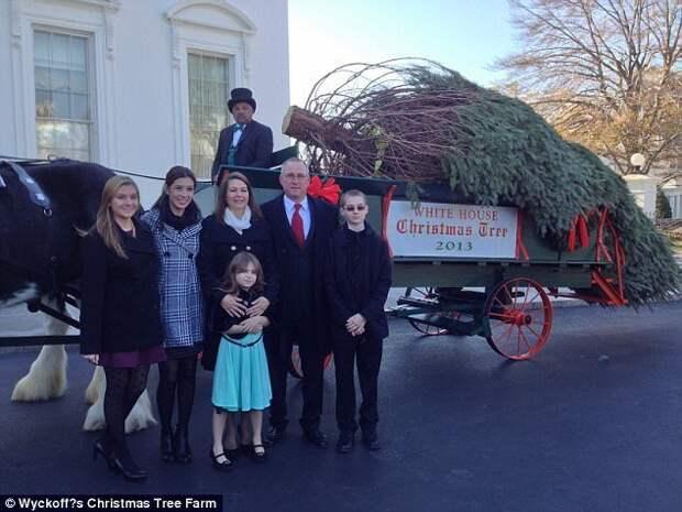 Семья фермеров Вайкофф занимается ёлками с 1958 года. Каждый год на ферме выращивают около 5000 деревьев пяти разных видов. trendy, креатив, новый год, рождество, сша, ферма, фото, ёлки