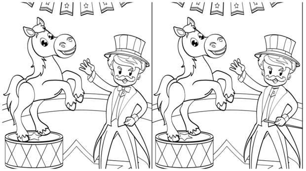 Тест на внимательность: найдите за одну минуту 3 отличия на картинке с лошадкой в цирке