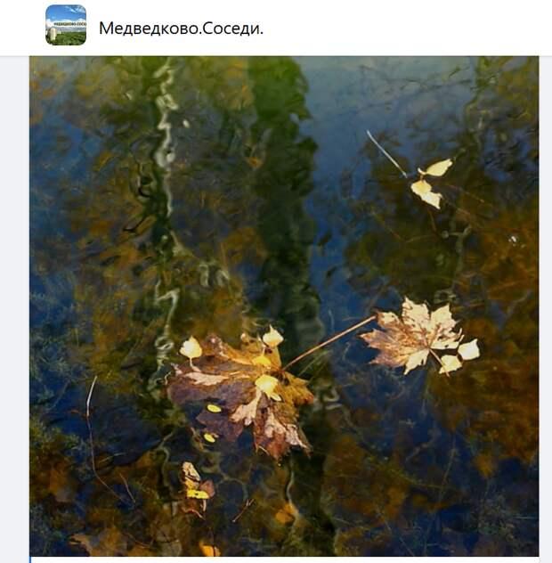 Фото дня: «Дыхание Осени Яуза»