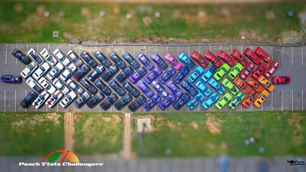 Фанаты Dodge Challenger сделали радугу из своих автомоблей challenger, dodge, флешмоб