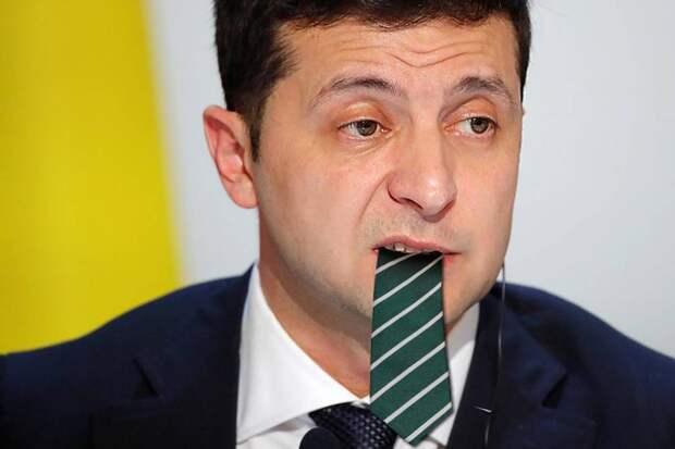 Какой галстук будет жевать Зеленский?