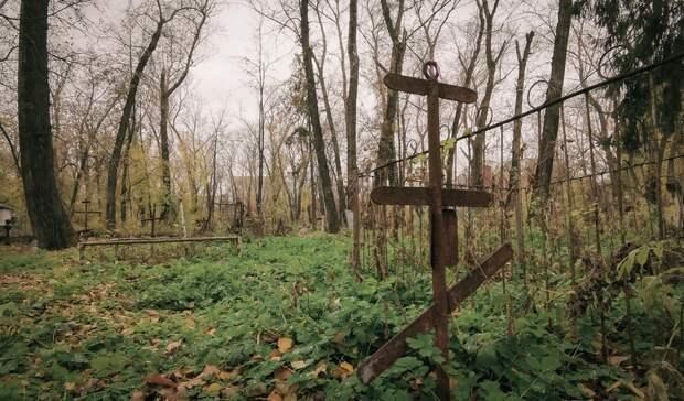Многодетная семья хочет построить дом на кладбище в Петрозаводске