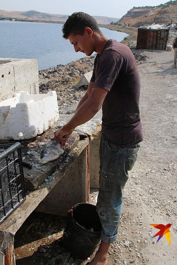 Али, продавец рыбы у моста через Евфрат Фото: Александр КОЦ