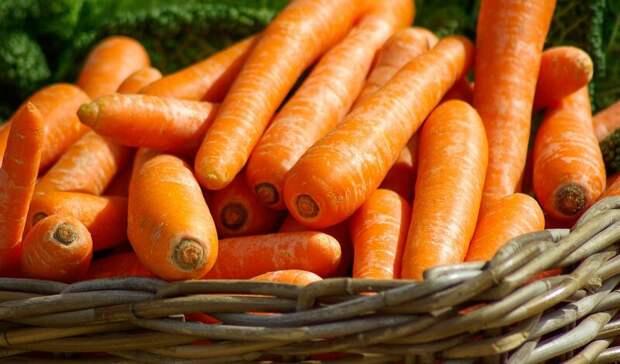 Власти опровергли заявления оскачках цен после сноса овощного рынка под Ростовом