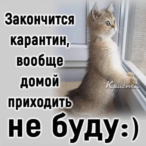 Рассказывает отец как-то сыну сказку:  - Срубил Илья Муромец Змею Горынычу голову...