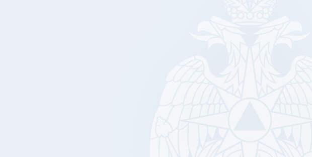 МЧС России создаст экспертную группу по соцрекламе для внесения изменений в действующее законодательство