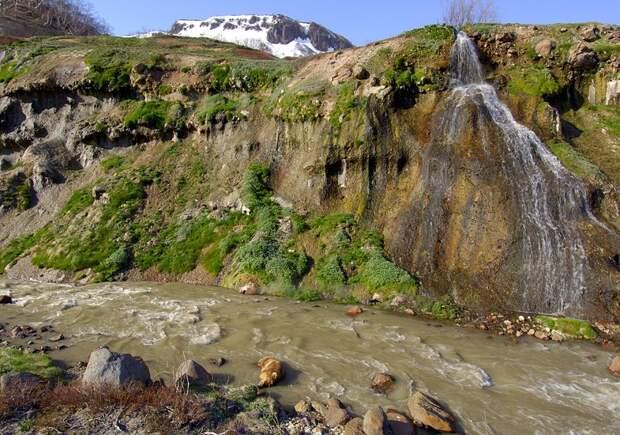 Bear soaking in Geyser River
