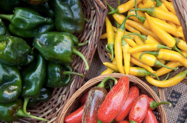 6 овощей, которые мы моем не правильно. Морковь сначала вымачивают