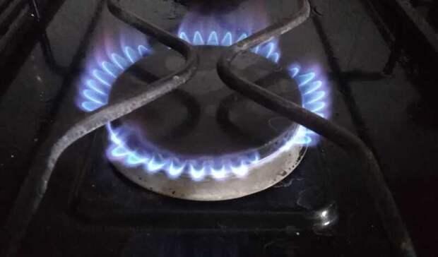«Единая Россия» добилась для россиян бесплатного подведения газа кучастку
