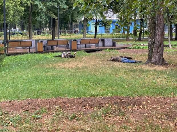 В Лосинке пьяным запретят валяться на газонах парка «Торфянка»