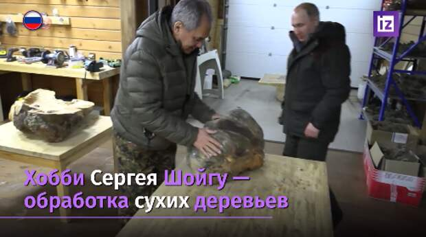 Картины и работы из дерева Шойгу продали на благотворительном аукционе за 40 млн рублей