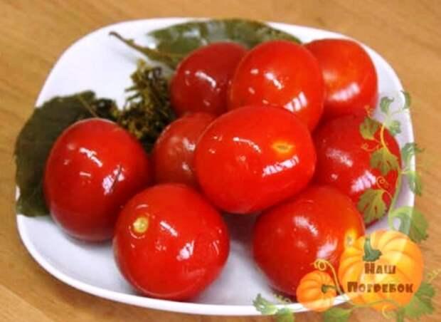 Квашеные помидоры на зиму в кастрюле, ведре и банках. Разные способы квашения томатов