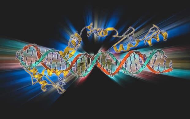 Ученые из США нашли схожесть Covid-19 с другой смертельной инфекцией