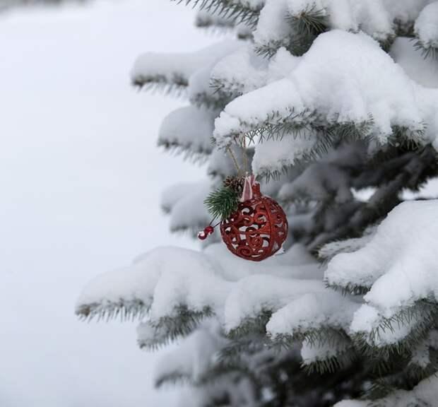 Деда Мороза и Снегурочку детишкам тоже придется звать онлайн, и не факт, что дозовутся
