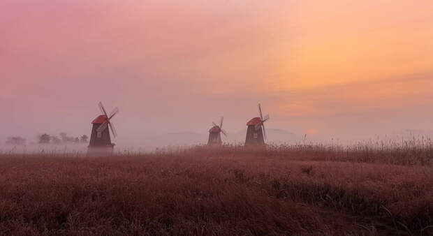Early morning and windmill, fog  by Jo seok Seo on 500px.com
