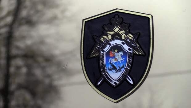 Тетю Гудкова обвинили в причинении имущественного ущерба