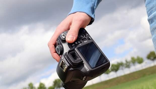 Фотоконкурс проведут в рамках подмосковной акции «Лес Победы»
