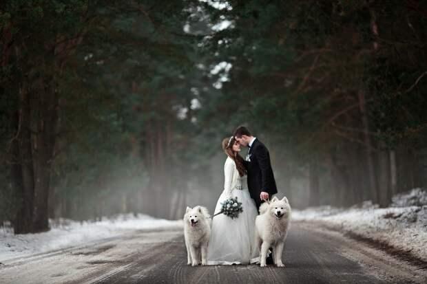 Ах, эта свадьба