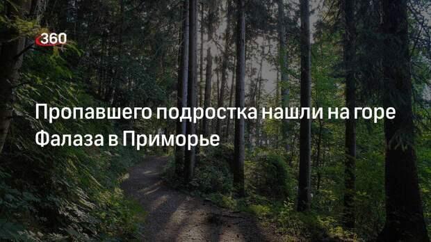 Пропавшего подростка нашли на горе Фалаза в Приморье