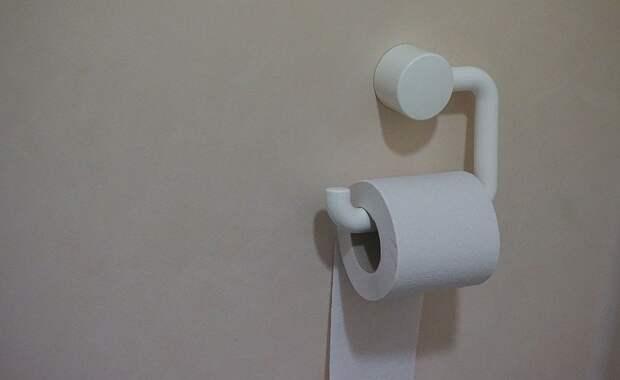 Как построить туалет на даче: пошаговая инструкция