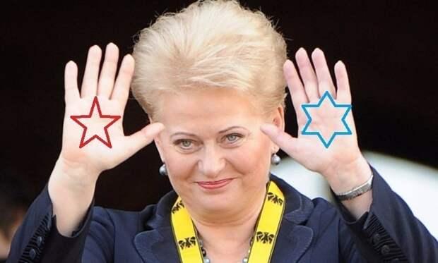 Это в России проблемы? Да Вы на недомытую Литву посмотрите!