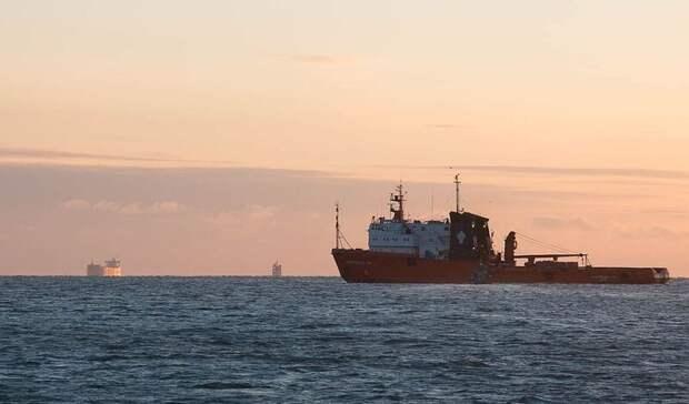 Декларацию попроекту увеличения перевалки нефтепродуктов через Туапсе заказала «Роснефть»