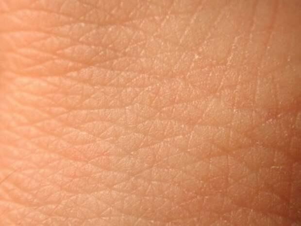 9. Наша кожа никогда не перестаёт расти тело, человек, шокирующие факты