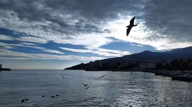 Оздоровиться и укрепить иммунитет: эксперт рассказал, как в Крыму лечат воздухом