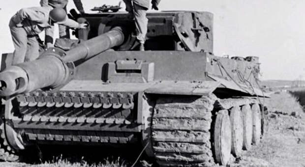 Чем Закончился Первый Бой Тигров В Африке?
