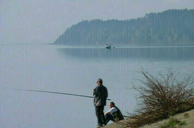 Разводить рыбу в больших прудах на водотоках будет проще