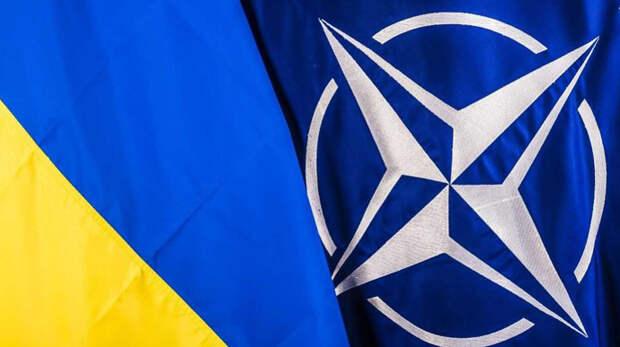Эксперт объяснил, зачем НАТО усиливает эксплуатацию Украины