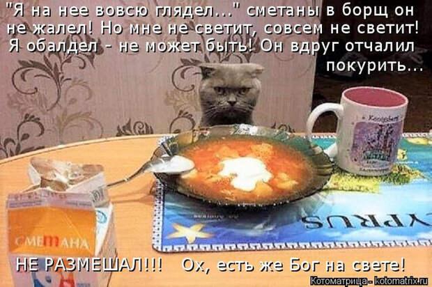 kotomatritsa_RH (700x465, 381Kb)