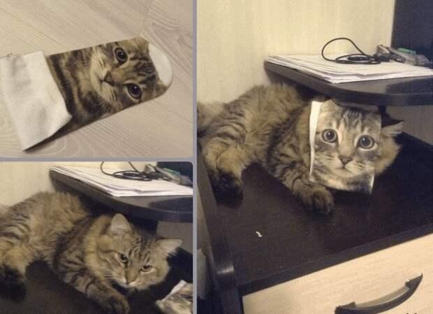 Разные идеальные совпадения на снимках