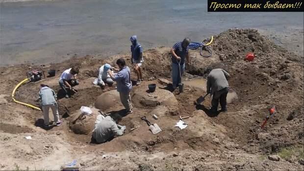 Видео: Пастух нашел странные валуны, а те оказались древними броненосцами-гигантами