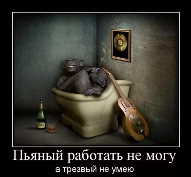 Смешные комментарии. Подборка chert-poberi-kom-chert-poberi-kom-51410623082020-11 картинка chert-poberi-kom-51410623082020-11