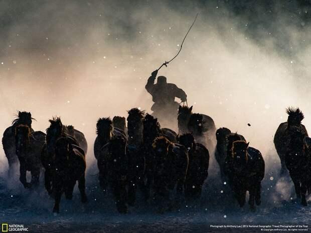 Лучшие фото путешественников по версии National Geographic — 2016